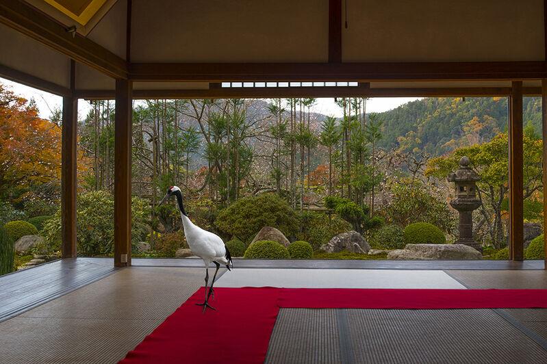 Karen Knorr, 'Journey to the Great Sage , Jikko –in Temple, 0hara', 2015, Photography, Hannemuhle Fine Art Pearl paper, Galerie Les filles du calvaire