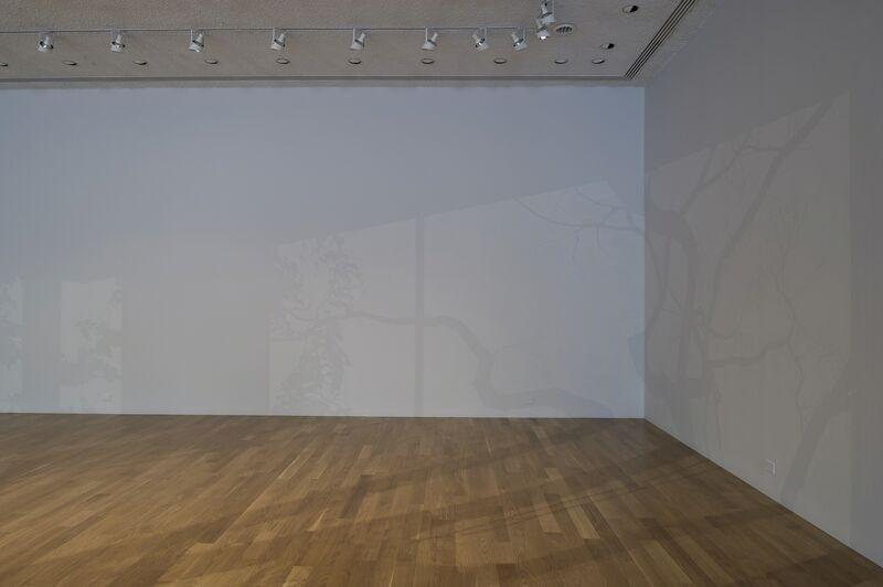 Mary Temple, 'Northwest Corner, Southeast Light', 2011, Installation, Rice University Art Gallery