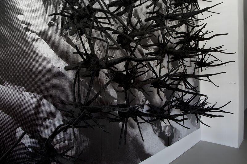 Anita Dube, 'Ah (a sigh)', 2008, Installation, Fiberglass root units, velvet, digital print on vinyl mounted on board, Nature Morte