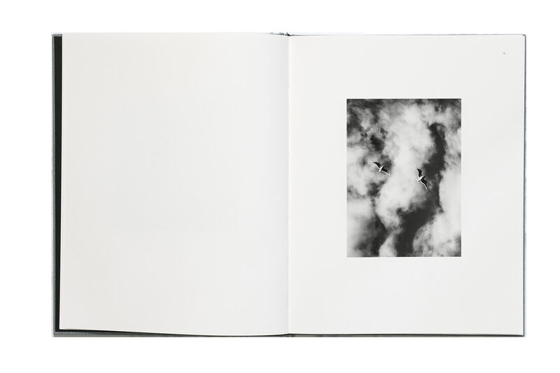 Michael Kenna, 'Des oiseaux – Limited edition', 2019, Photography, Book, Xavier Barral