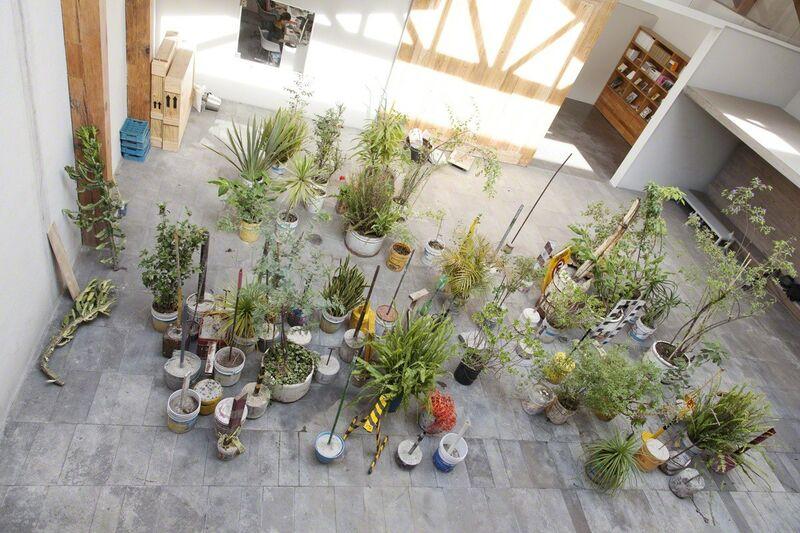 Diego Pérez, 'Esquema para una oda tropical', 2005, Installation, Mixed media (plants, concrete, metal, plastic), Taka Ishii Gallery