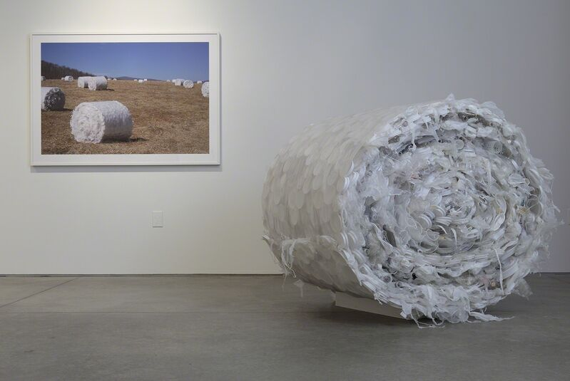 Susie Ganch, 'Bale', 2014, Photography, Giclée, Sienna Patti Contemporary