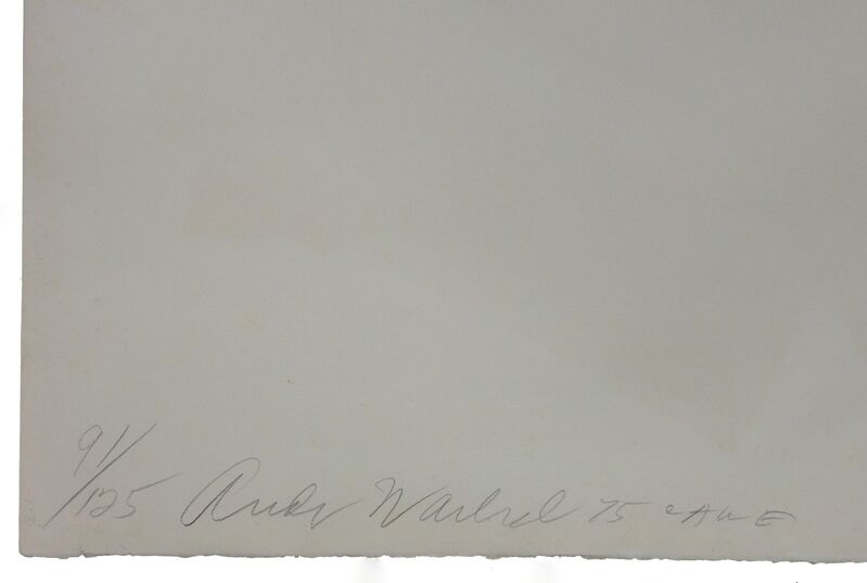 Andy Warhol, 'LADIES & GENTLEMEN FS II.137', 1975, Print, SCREENPRINT ON ARCHES PAPER, Gallery Art