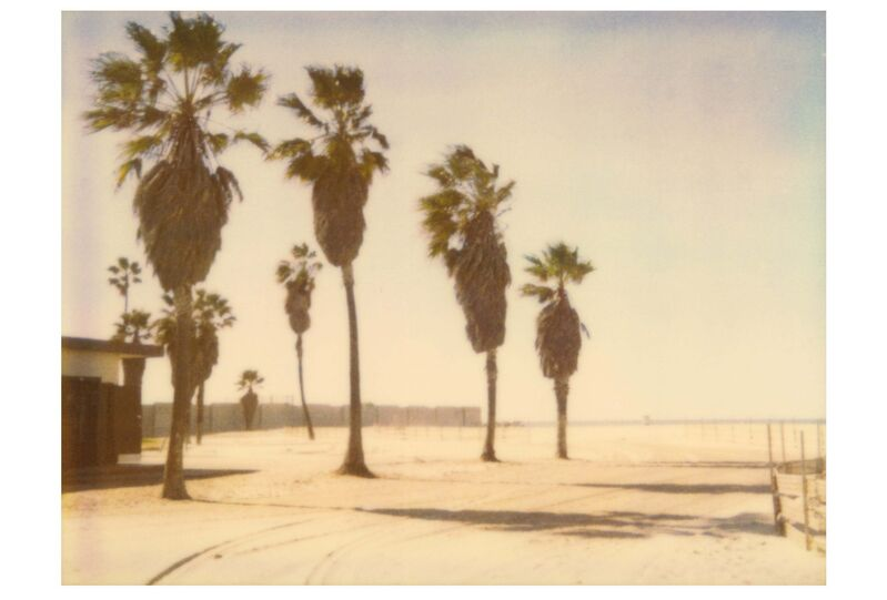 Stefanie Schneider, 'Palm Trees in Venice (Stranger than Paradise) ', 1999, Photography, Analog C-Print based on a Polaroid, hand-printed by the artist on Fuji Crystal Archive Paper. Not mounted., Instantdreams