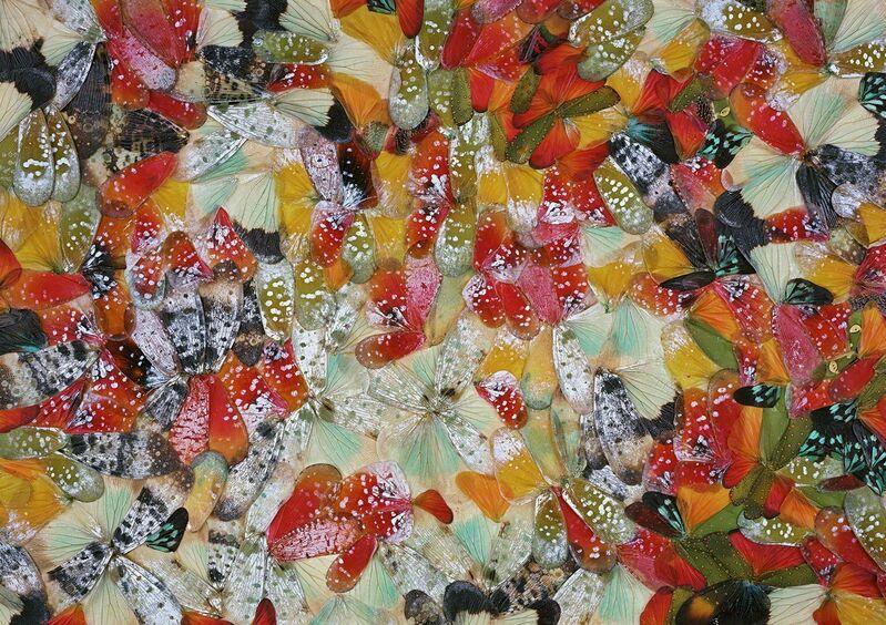 Nathalia Edenmont, 'Meditation', 2011, Photography, C-print mounted on glass, Nancy Hoffman Gallery