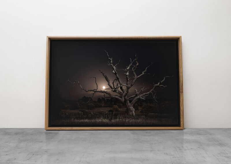 Jasper Goodall, 'Twilight's Path 030 - Moonrise', 2019, Photography, Archival Pigment Print on Ilford Galleries Smooth Pearl, Mounted on Aluminium, plus further framing options available, MMX Gallery