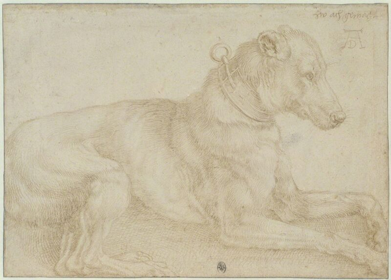 Albrecht Dürer, 'Dog Resting', c. 1520, Print, Silverpoint over charcoal on pale pink prepared paper, British Museum