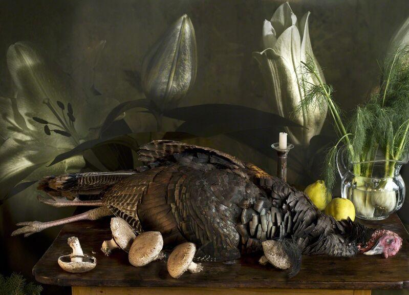 Vera Mercer, 'Wild Turkey', 2011, Photography, Hahnemühle Photo Rag Ultra Smooth 305 g, 100 % cotton, Galerie Jordanow
