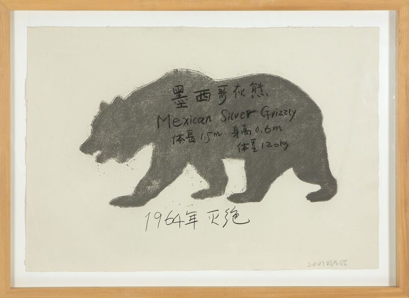 Yang Maoyuan, 'Mexican Silver Grizzly', 2007, Painting, Painting on paper, Heather James Fine Art
