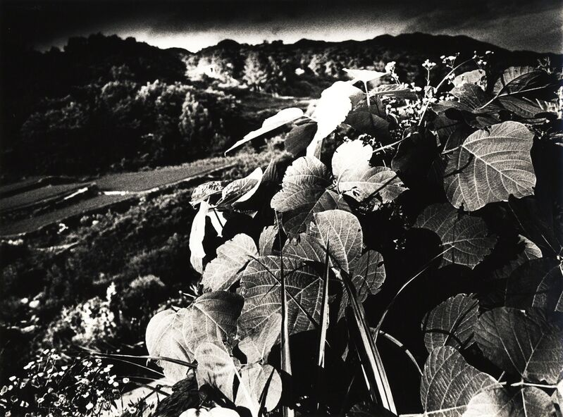 Daido Moriyama, 'MT. DAIBOSATSU (No. 2001)', 1991, Gelatin silver print, vintage, Galerie Bob van Orsouw