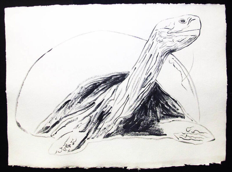 Andy Warhol, 'Vanishing Animals - Galapagos Tortoise', 1986, Drawing, Collage or other Work on Paper, Synthetic polymer paint, Hamilton-Selway Fine Art