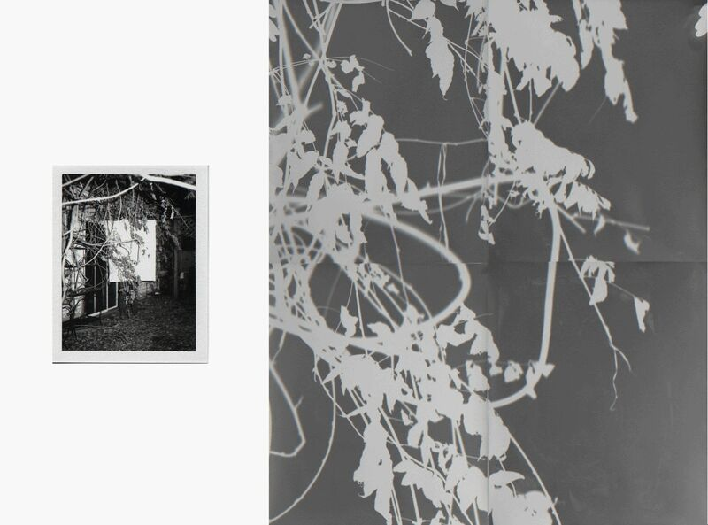 Bryan Graf, 'Shot/Reverse Shot 7', Photography, Polaroid + Photogram, Yancey Richardson Gallery