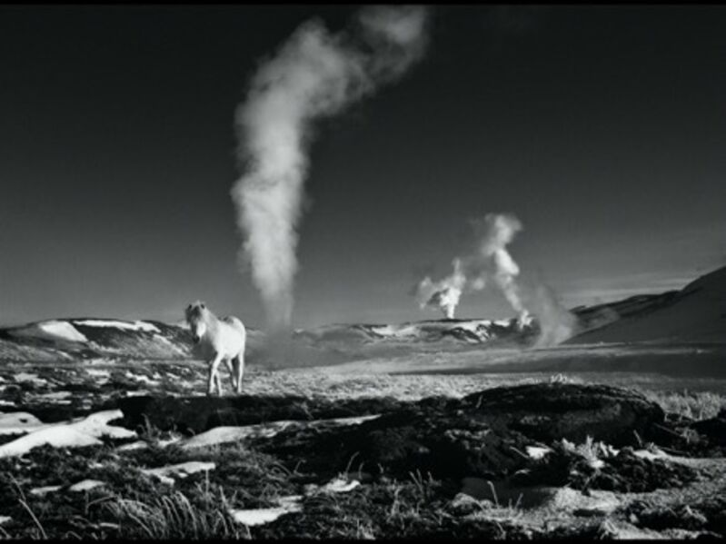 David Yarrow, 'Lord of the Rings', 2013, Photography, Archival Pigment Print, Maddox Gallery