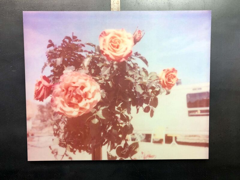 Stefanie Schneider, 'A Sunny Morning (The Girl behind the White Picket Fence)', 2013, Photography, Analog C-Print, hand-printed by the artist on Fuji Crystal Archive Paper, based on a Polaroid, mounted on Aluminum with matte UV-Protection, Instantdreams