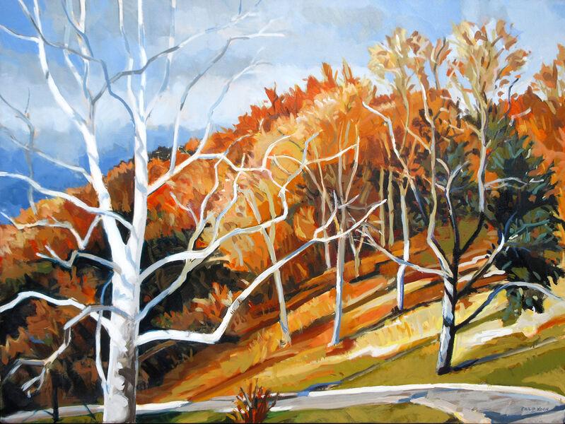 Philip Koch, 'Late Autumn Sun', 2019, Painting, Oil on canvas, Somerville Manning Gallery