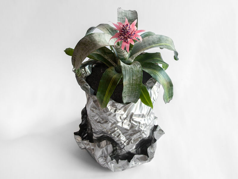 Christopher Prinz, 'Wrinkled Outdoor Planter', 2019, Design/Decorative Art, Stainless Steel, Patrick Parrish Gallery
