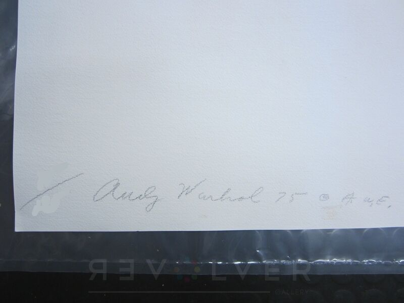 Andy Warhol, 'Ladies and Gentlemen, Orange (FS II.133)', 1975, Print, Screenprint on Arches paper, Revolver Gallery