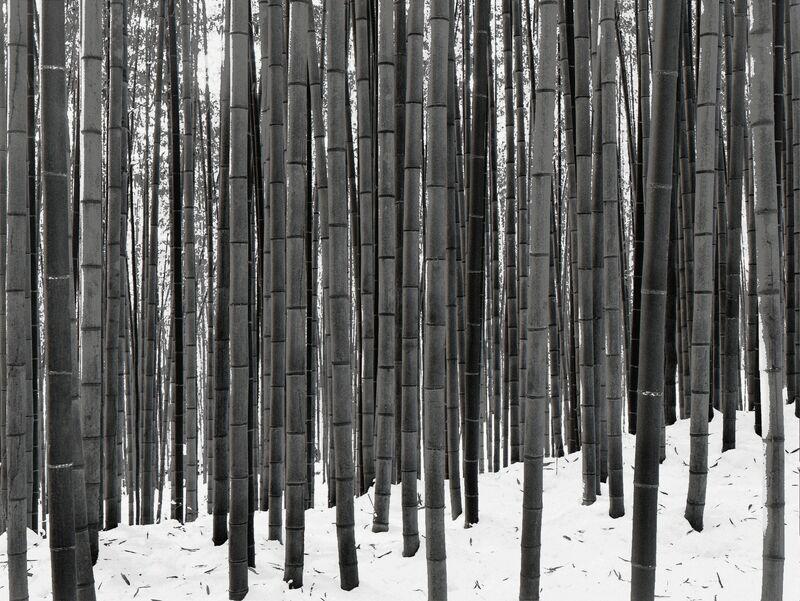 DaeSoo Kim, 'Winter Light', Photography, Silver Gelatin, Gallery 270