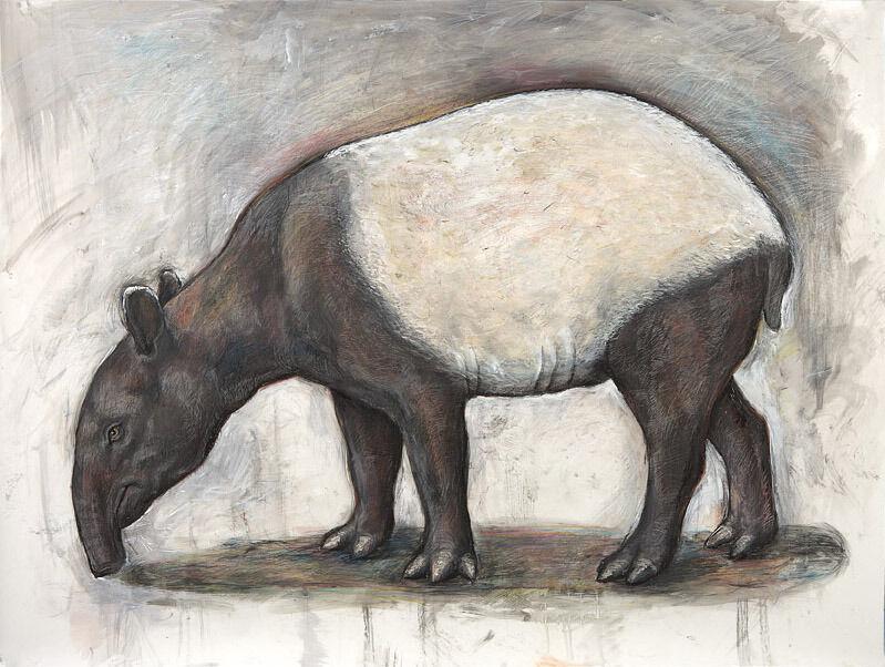 Elli Crocker, 'Tapir', 2012, Drawing, Collage or other Work on Paper, Clark Gallery