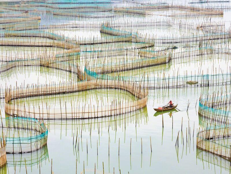 David Burdeny, 'Nets, Ningde, Fujian, China', 2017, Photography, Archival pigment print, Gilman Contemporary