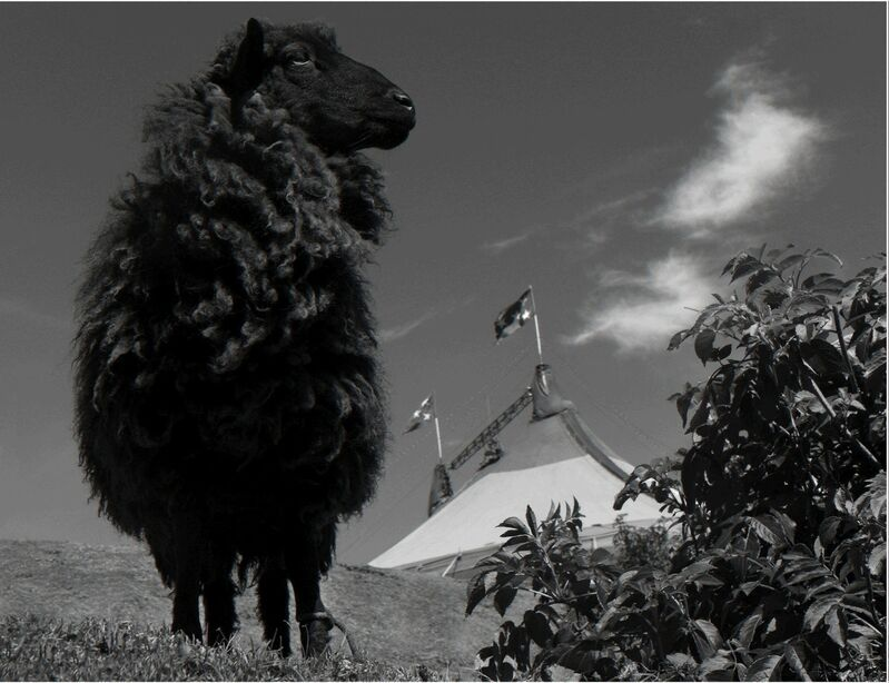 Olin Heitmann, 'Untitled', 2018, Photography, Carbon Print, Patricia Conde Galería