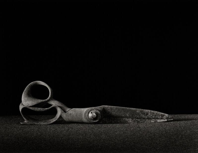 Richard Kagan, 'Recumbent Shears', 1992, Photography, Toned Silver Gelatin, Gallery 270