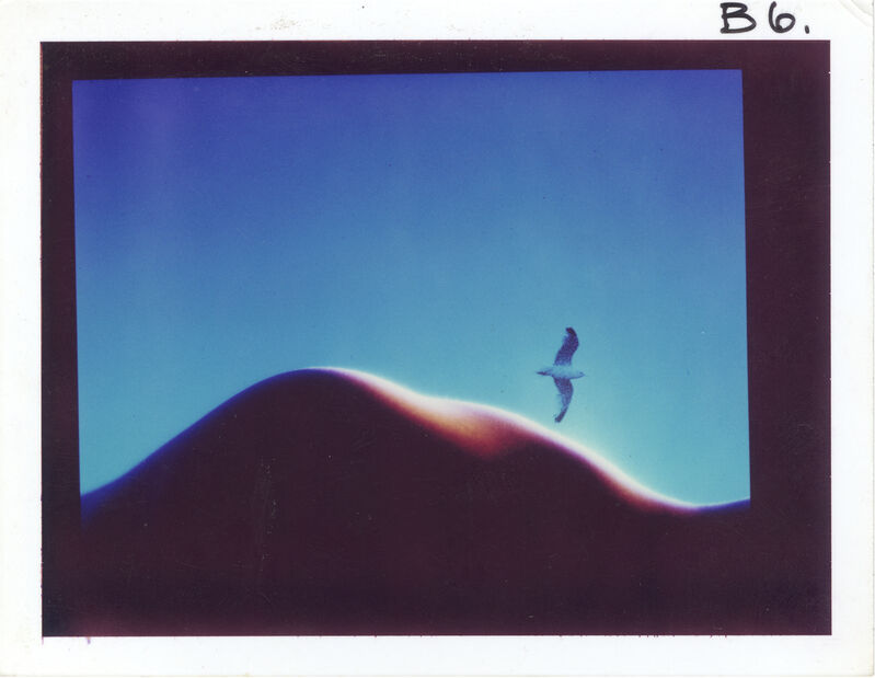 Sam Haskins, 'Blue Period', unknown date. , Photography, Polaroid, Grob Gallery