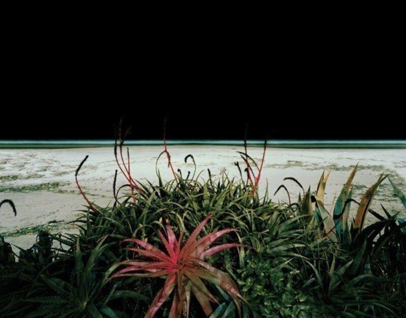 Edgar Martins, 'The Accidental Theorist', 2007, Photography, C-print, Joanna Bryant & Julian Page