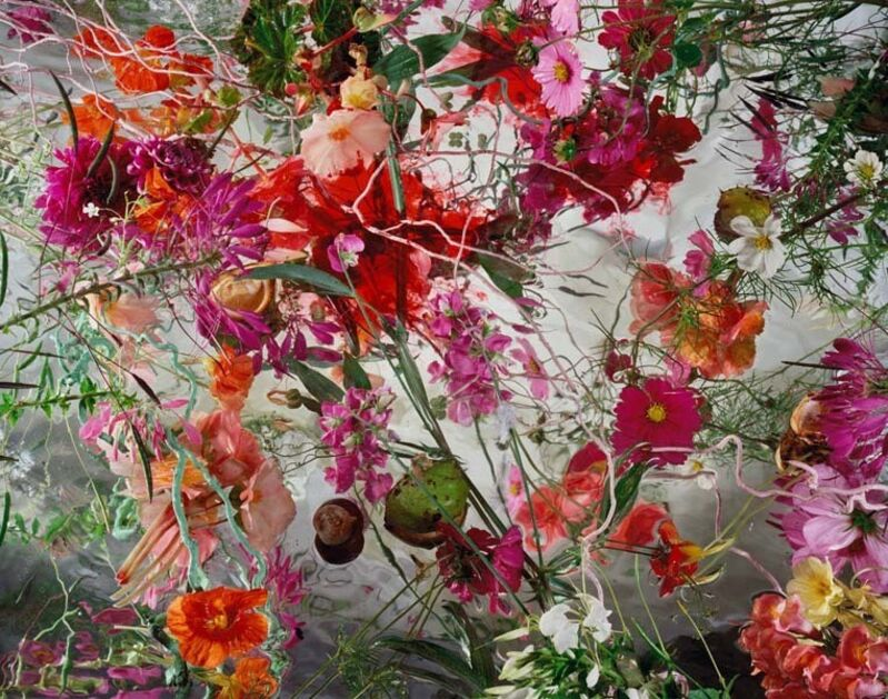 Margriet Smulders, 'Thou Art More Lovely', 2012, Photography, Diasec, Galerie Jordanow