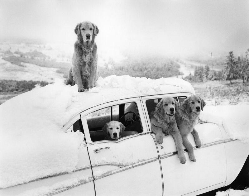 Bruce Weber, 'Summer Snow Storm, Little Bear Ranch, Montana', 1994, Photography, Gelatin Silver Print, Staley-Wise Gallery