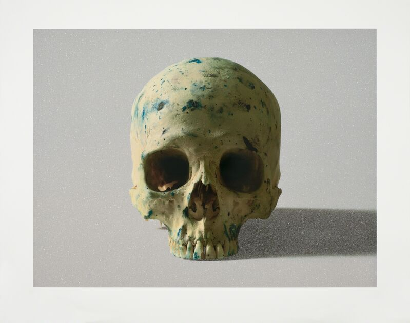 Damien Hirst, 'Studio Half Skull, face on', 2009, Print, Silkscreen on 410gsm Somerset Tub Sized with diamond dust. Signed and numbered, Paul Stolper Gallery