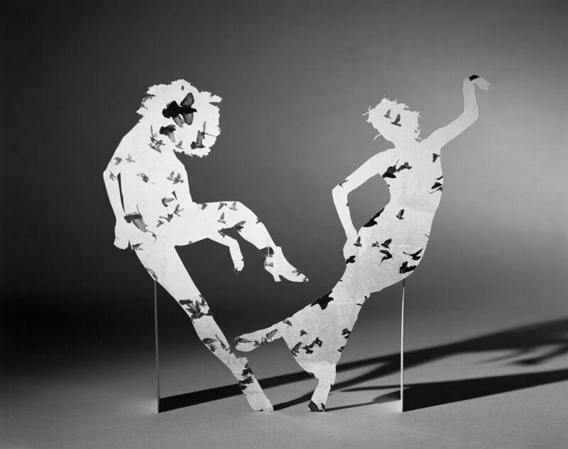 Matt Lipps, 'Birds', 2019, Photography, Gelatin silver print, Jessica Silverman