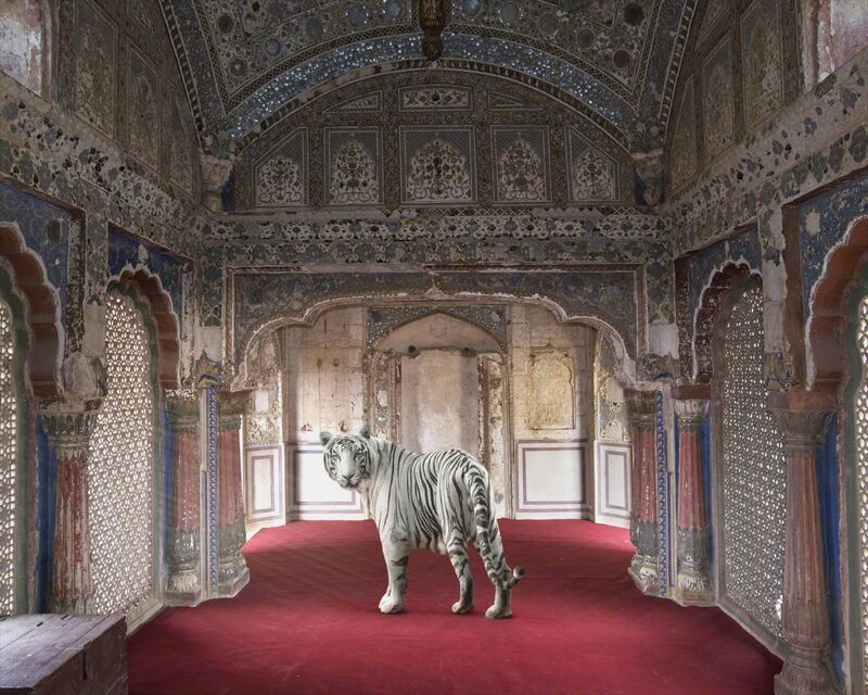 Karen Knorr, 'The Divine Heritage of the Yadavas, Sheesh Mahal, Karauli City Palace', 2014, Photography, Print on Hannemuhle Fine Art Pearl paper, Galerie Les filles du calvaire