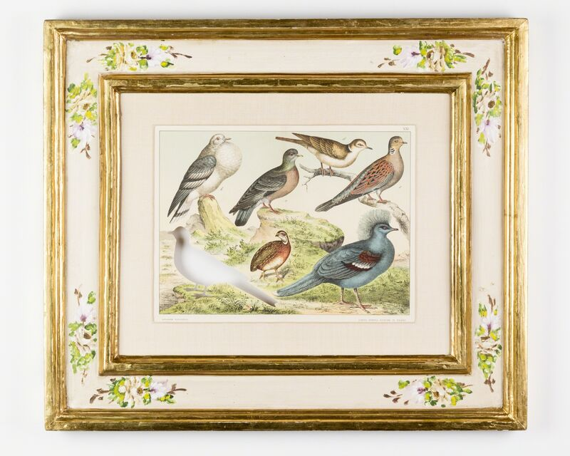 Brandon Ballengée, 'RIP Passenger Pigeon: After Ferdinando Sordelli', 1887/2015, Print, Artist cut and burnt chromolithograph, etched glass funerary urn and ashes, Goya Contemporary/Goya-Girl Press