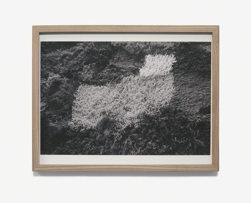Iris Eichenberg, '#1', 2017, Print, Digital print on archival paper, framed, Simone DeSousa Gallery