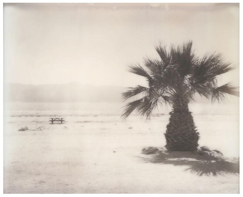 Stefanie Schneider, 'Salton Sea Palm Trees (California Badlands)', 2016, Photography, Digital C-Print, based on a Polaroid, Instantdreams