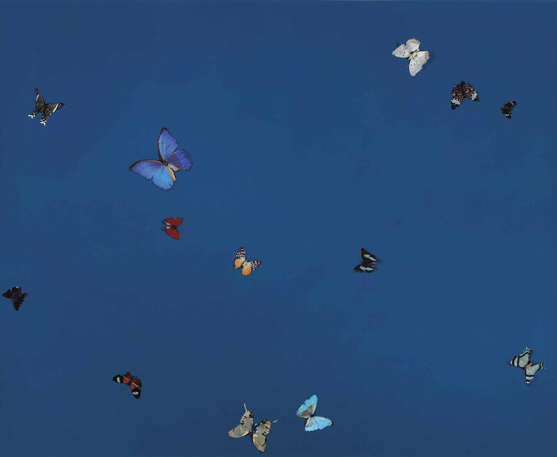 Damien Hirst, 'Universal Love', 2001, Painting, Household gloss and butterflies on canvas, Gallery Red
