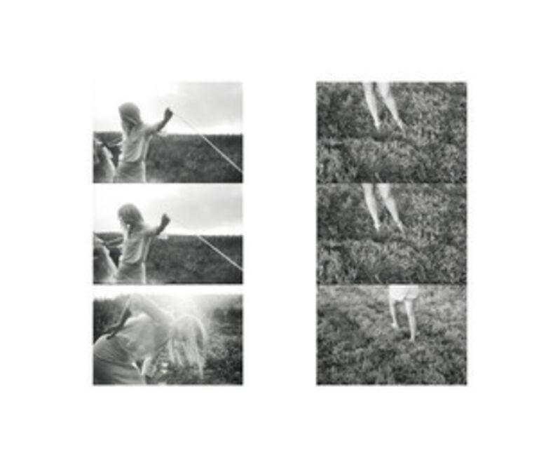 Carrie Mae Weems, 'BAM Photo Portfolio IV', 2001-2009, Photography, Fine art photography, BAM