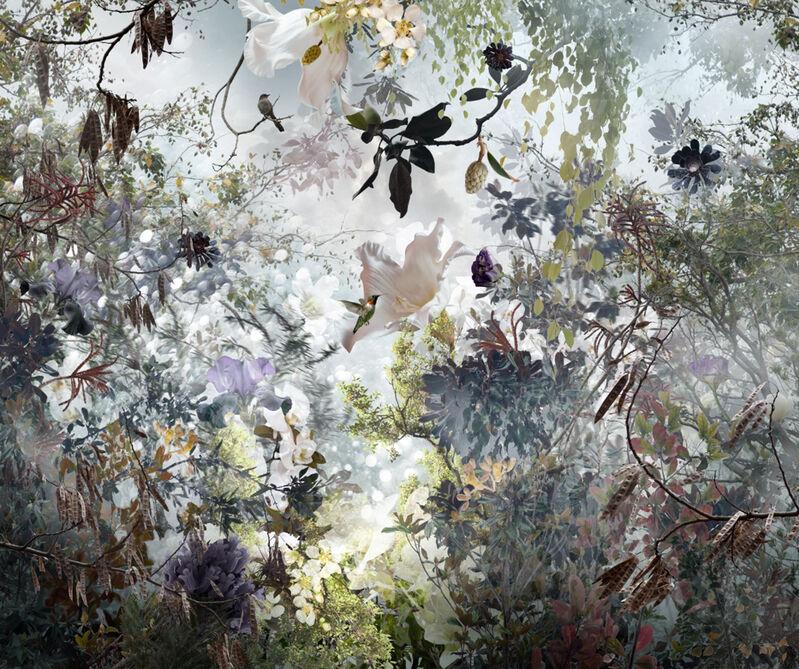 Ysabel Lemay, 'Ornatus', Photography, C-print on acrylic, Lanoue Gallery