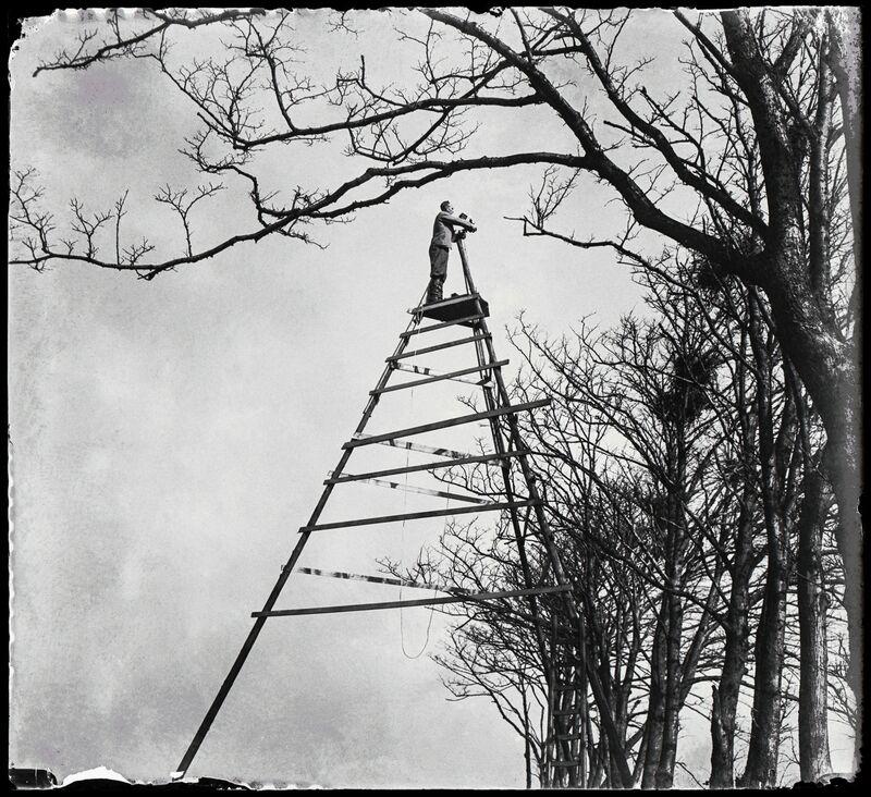 Jan Pieter Strijbos, 'The Summit of Bird Photography, Sloten', 1933, Photography, Nederlands Fotomuseum