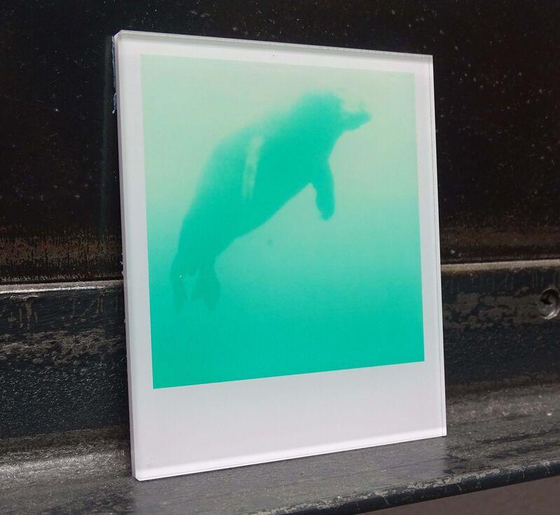Stefanie Schneider, 'Stefanie Schneider Minis - Skywhale (Stay) ', 2005, Photography, Lambda digital Color Photographs based on a Polaroid, sandwiched in between Plexiglass, Instantdreams