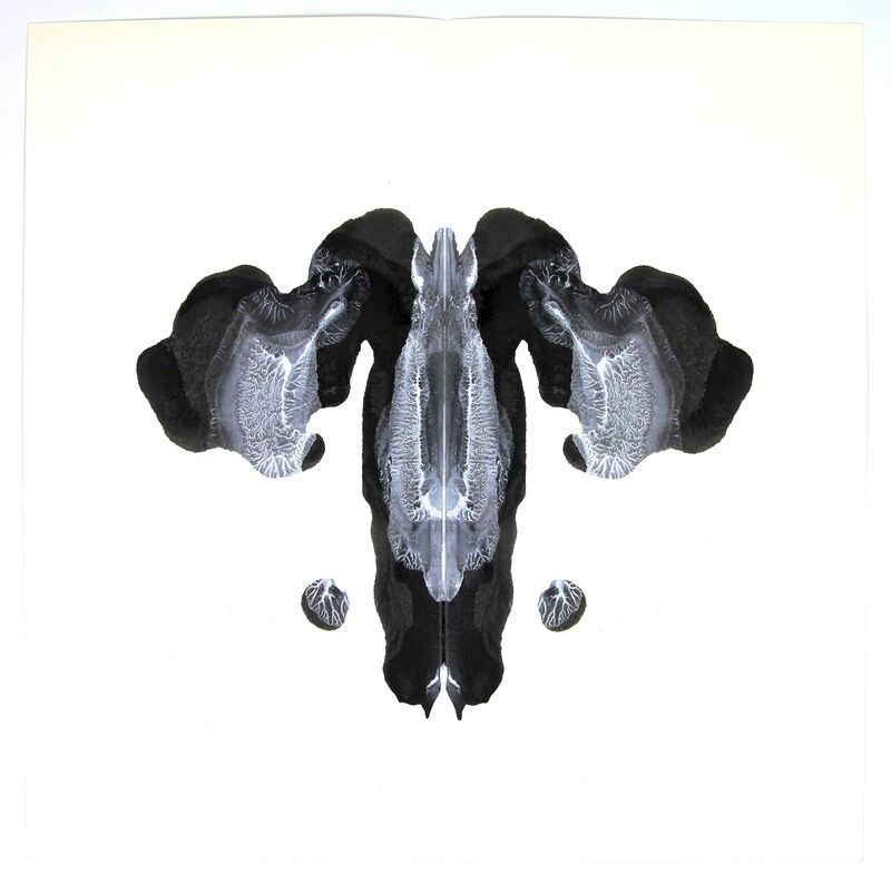 Cornelia Parker, 'Poison and Antidote Drawings (8)', 2012, Drawing, Collage or other Work on Paper, Ink on Paper, Wilde