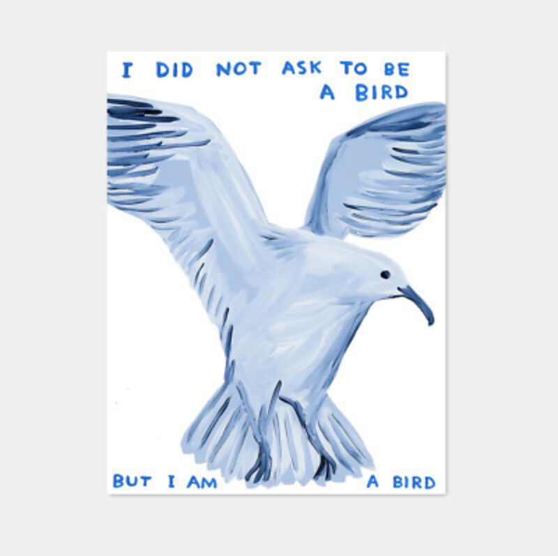 David Shrigley, 'I Did Not Ask To Be A Bird', 2020, Posters, Printed on 200g Munken Lynx paper, 3 White Dots