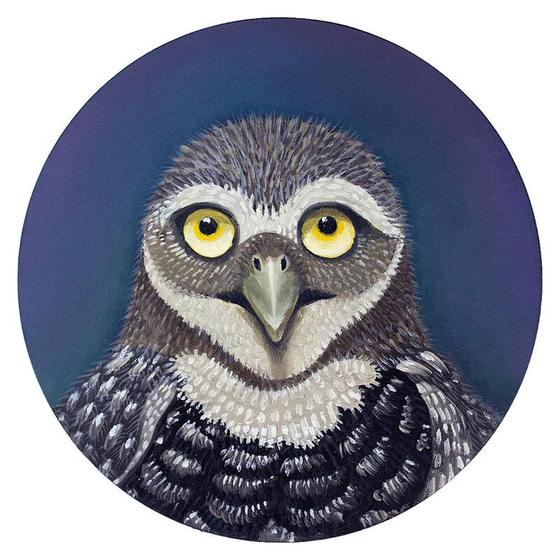 Sarah Stone, 'Burrowing Owl ', 2020, Painting, Oil on cradled wood, Castelli Art Space