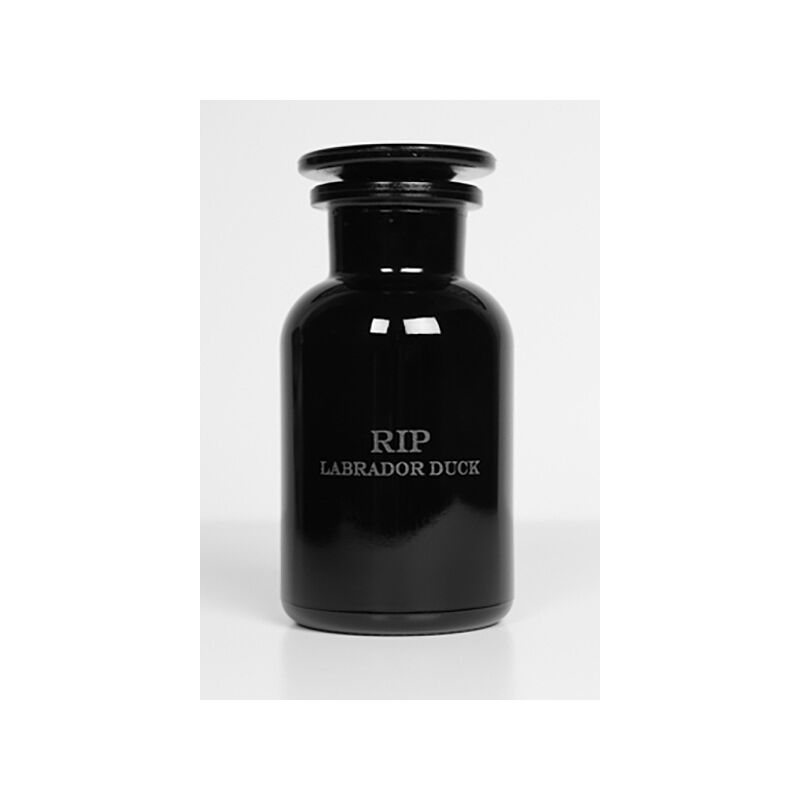 Brandon Ballengée, 'RIP Labrador Duck: After Theodore Jasper', 1881/2015, Print, Artist cut and burnt chromolithograph, etched glass funerary urn and ashes, Goya Contemporary/Goya-Girl Press