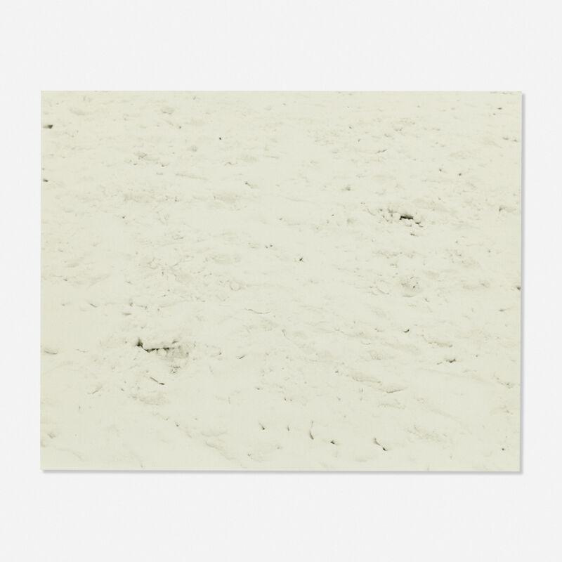 Andy Warhol, 'Snow', 1982, Photography, Gelatin silver print, Rago/Wright