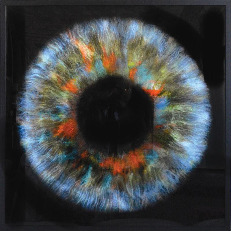 Daniel Gastaud, 'Iris Flowers', 2017, Mixed Media, Feathers under Plexiglas, Eden Fine Art