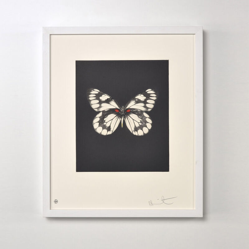 Damien Hirst, 'Butterfly (Portfolio of 12)', 2009, Print, Etching, Weng Contemporary