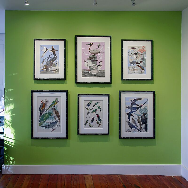 Walter Addison Estate, 'Bird Paintings', ca. 1940, Painting, Gouache and ink on paper, Cade Tompkins Projects
