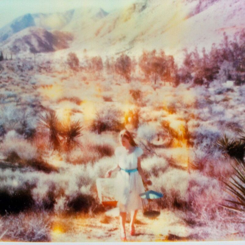 Stefanie Schneider, 'Runaway (Haley and the Birds)', 2013, Photography, Lambda digital Color Photographs based on a Polaroid, sandwiched in between Plexiglass, Instantdreams